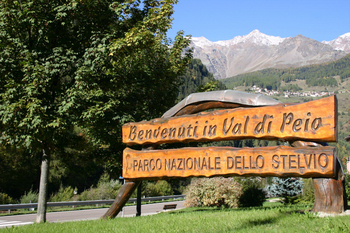 Welcome in Val di Pejo